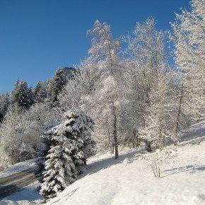 Morzine snow, France