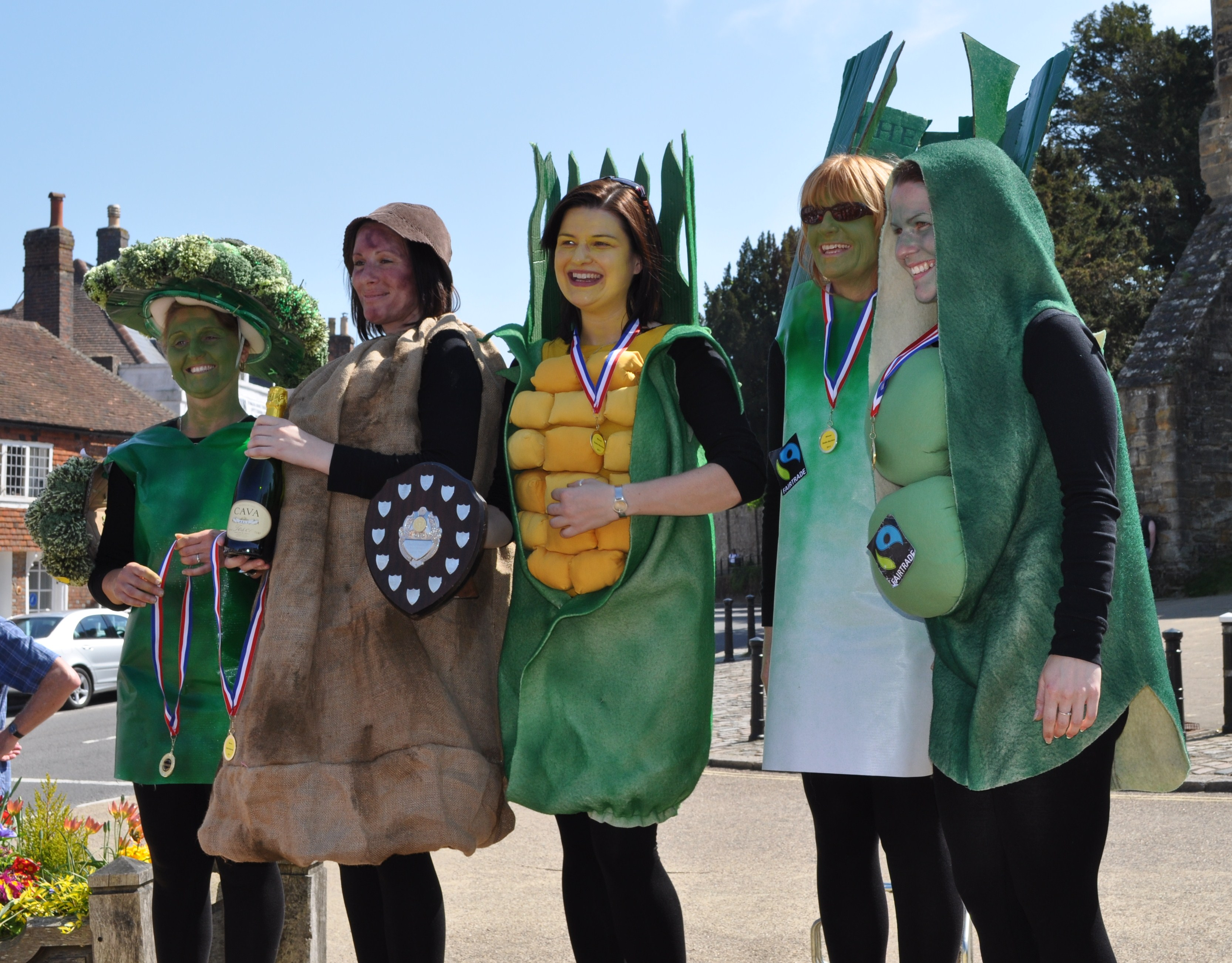Fancy Dress Five a Day
