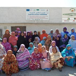 The women of the Tighanimine Fairtrade Argan Oil Cooperative