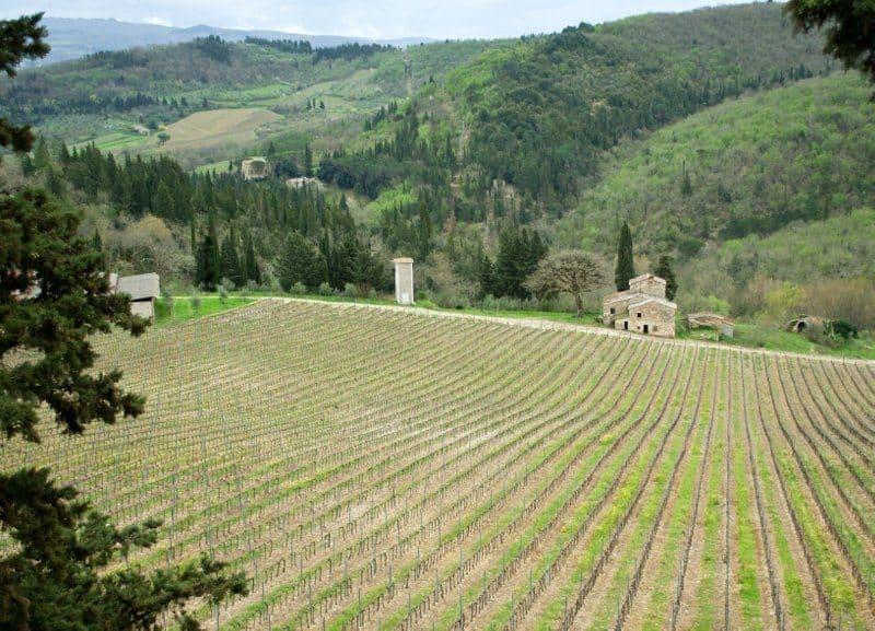 Tavarnelle Chianti – The Good Life