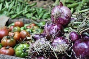 Red Onions Catania Market