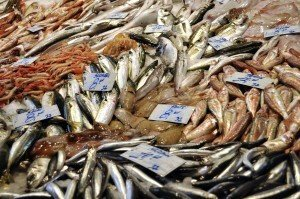 Fish Stall at Catania Market