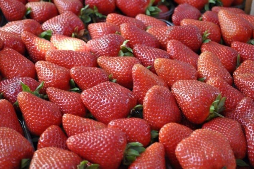 Strawberries at Catania Market
