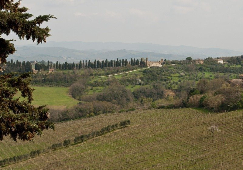 View from Villa Il Paganello