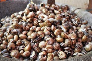 Catania Market - Snails for sale in the market