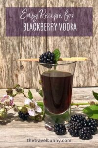 Blackberry Vodka drink