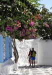 Whitewashed Walls and Bourganvillea