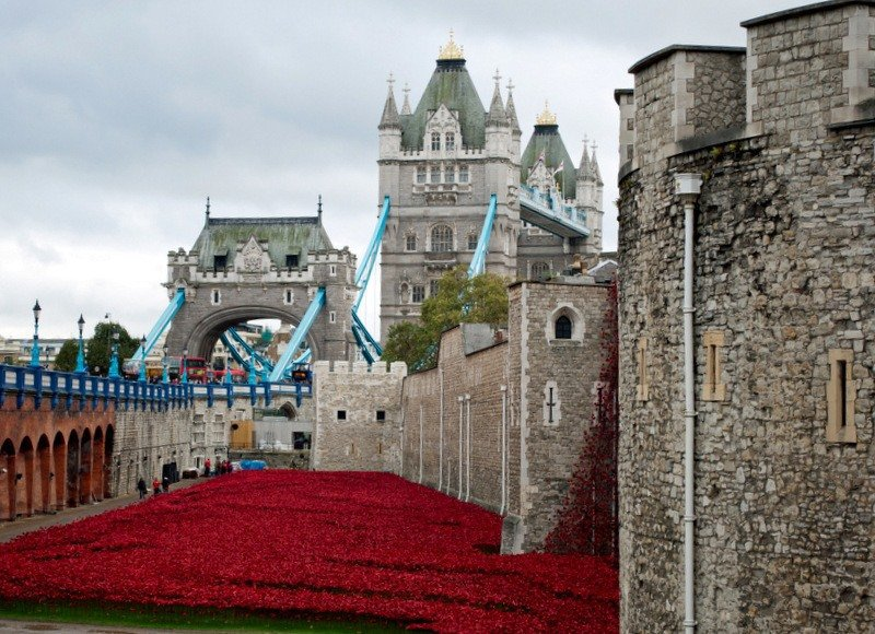 Tower Poppies and Tower Bridge