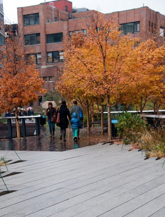 Autumn Colour on the High Line