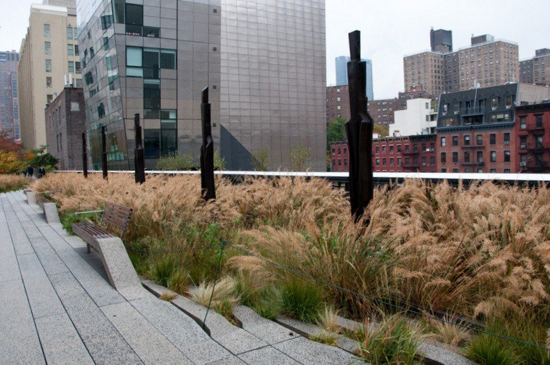 Chelsea Grasslands on the High Line