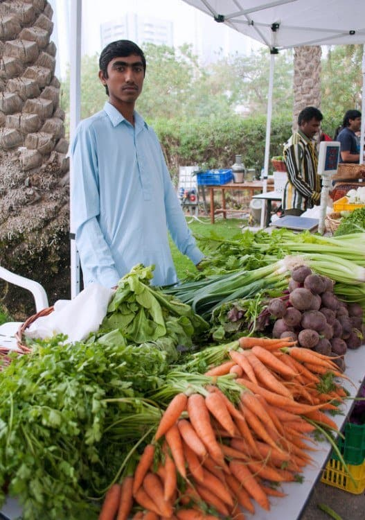 The Farmer's Market on the Terrace
