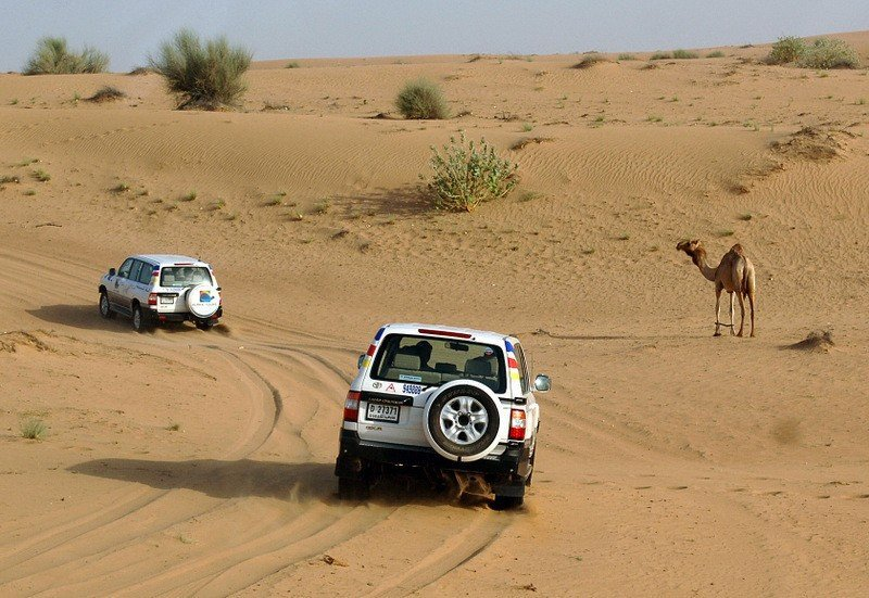 Alpha Tours - Desert Safari 3