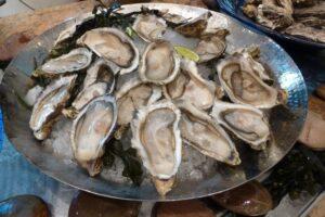 oyesters-shells