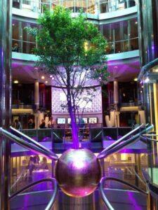 Live-tree-cruise-ship-atrium