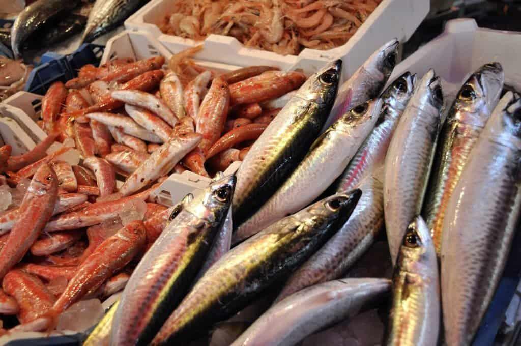 Fish at Mercado do Bolhao