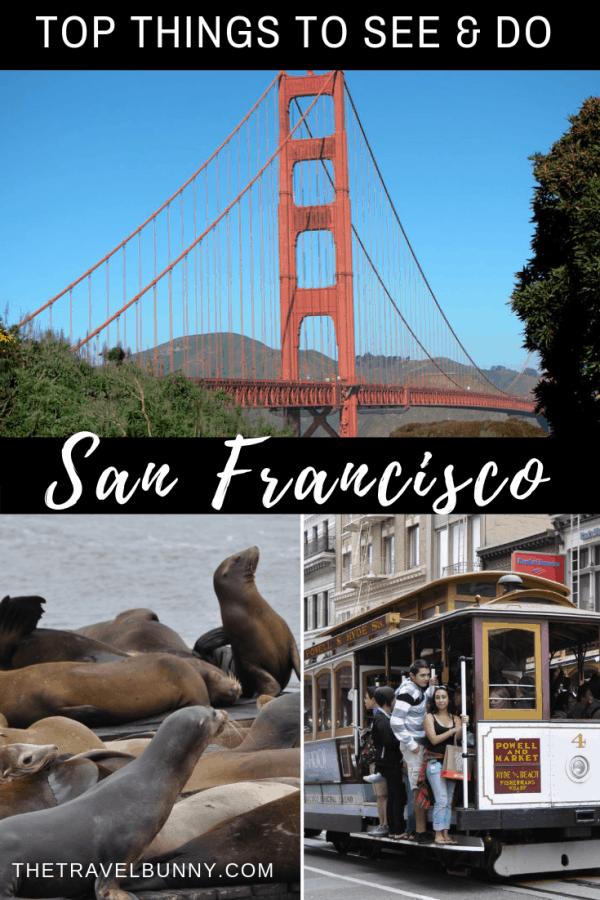 San Francisco photo montages Golden Gate Bridge, Seals and tram