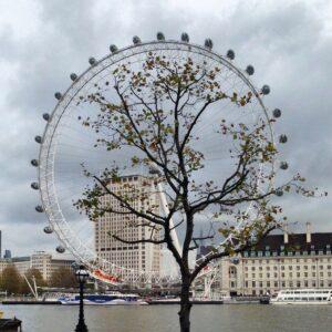 london-eye-241-passport