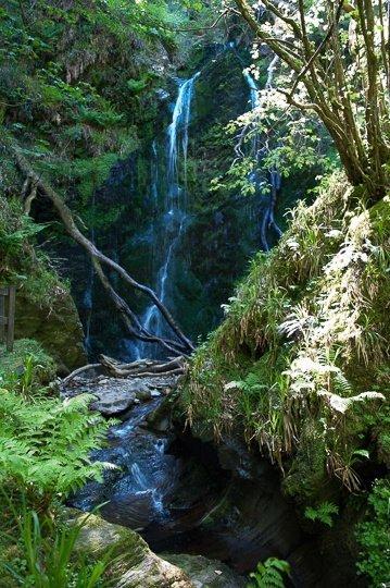 dhoon-glen-waterfall