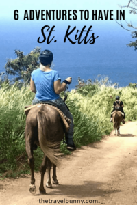 horse and rider with Caribbean sea background