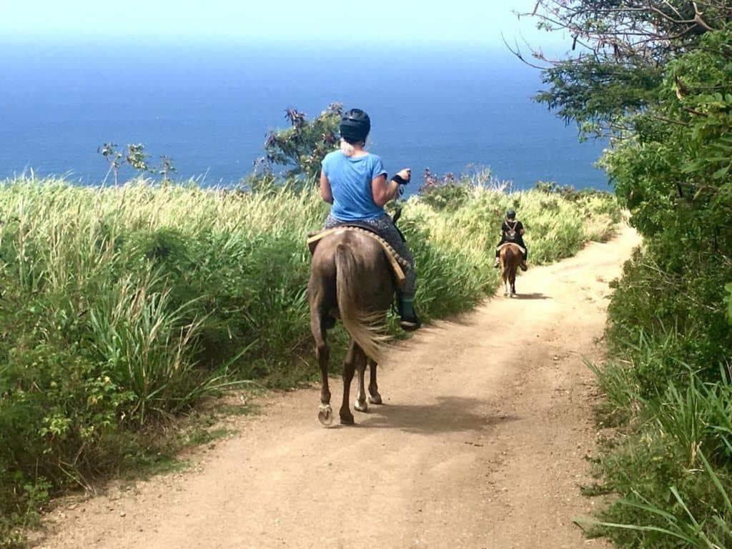 st-kitts-horse-back-riding