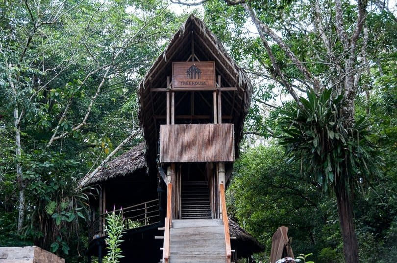 treehouse-lodge-amazon-jungle
