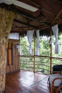 jungle-treehouse