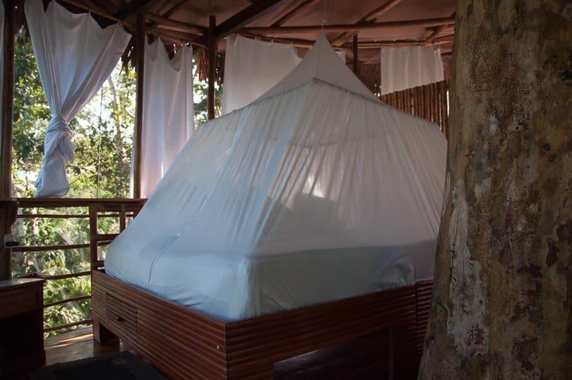 treehouse in Amazon Jungle