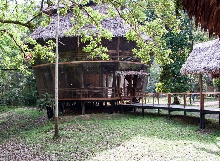 Treehouse Lodge, Amazon Jungle