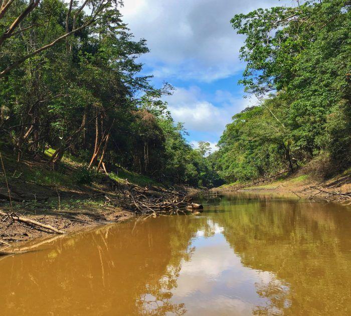 amazon-jungle-river-excursion