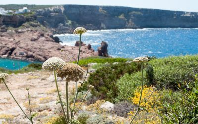 Things to do in Menorca, Spain – Part One