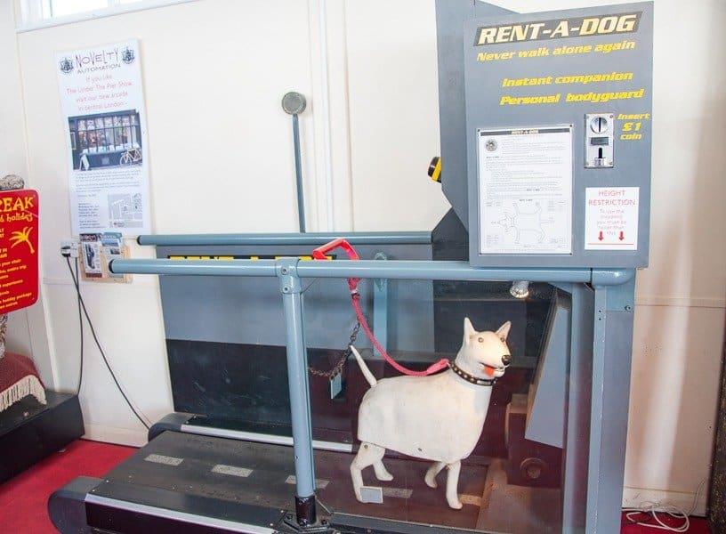 Southwold_pier-rent_a_dog
