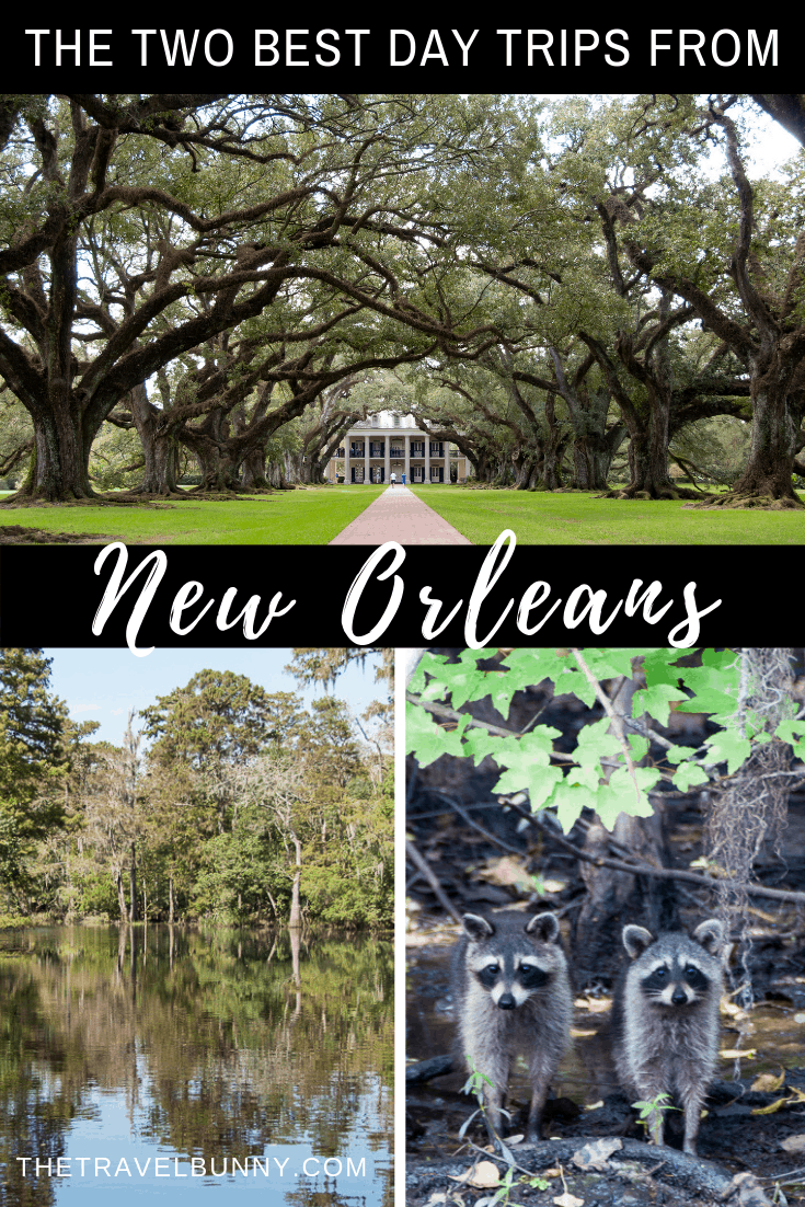 Two fabulous New Orleans day trips. Firstly, take a New Orleans plantation tour, offering history, romance and architecture before foraying into eco-territory with a Cajun swamp tour and wildlife spotting. You\'ll still be back in New Orleans with time to enjoy a night out in NOLA.