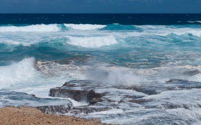 Exploring East Coast Barbados on a Bajan Road Trip