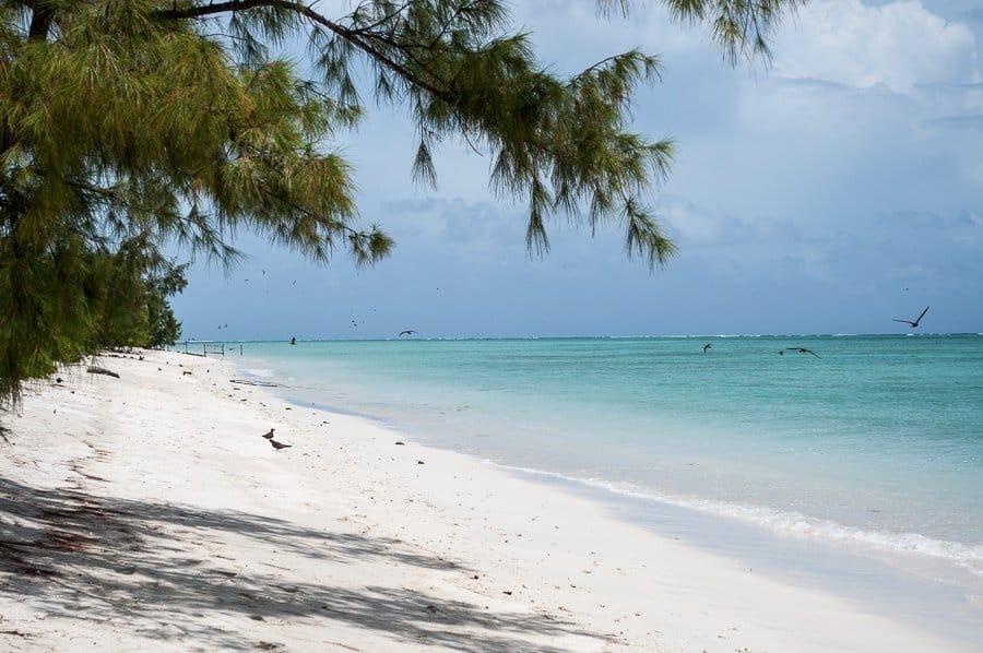 Rodrigues_Indian_ocean_island