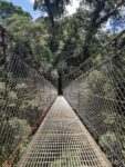 Hanging Bridge, La Fortuna, Costa Rica