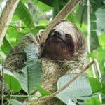 A Costa Rica Adventure