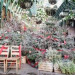 A Festive Day Out – Christmas in London