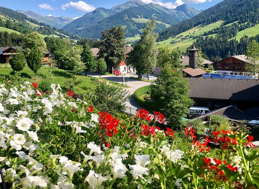 Alpbach Alpine valley with flowers in foreground