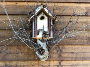 bird house with fir cones