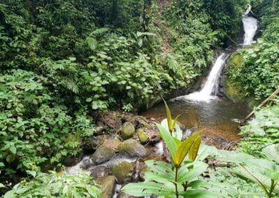 Cool things to do in Monteverde, Costa Rica